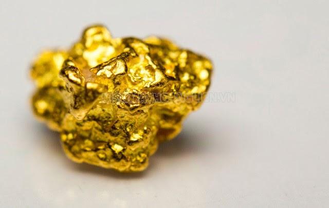máy dò vàng giá bao nhiêu